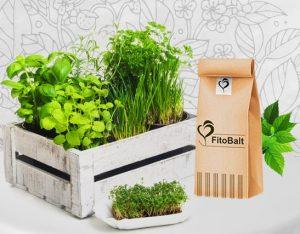 fitobalt scarica e erbe aromatiche