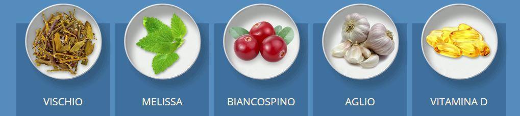 vischio melissa biancospino aglio vitamina D