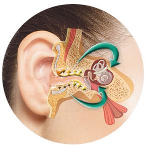 orecchio, udito