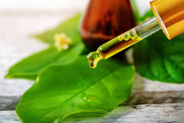 Olio dell'albero del tè