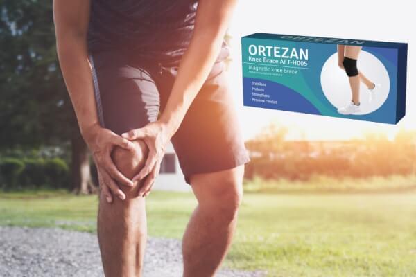 Che cosa è Ortezan?