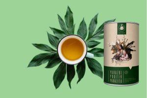 Parazol  – Tè per contrastare i parassiti con ingredienti naturali