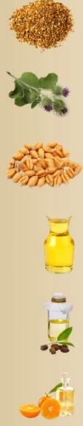 Ingredienti Head Hair