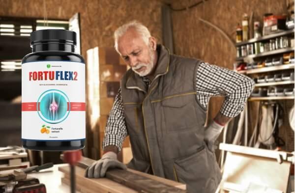 FortuFlex2 ingredienti